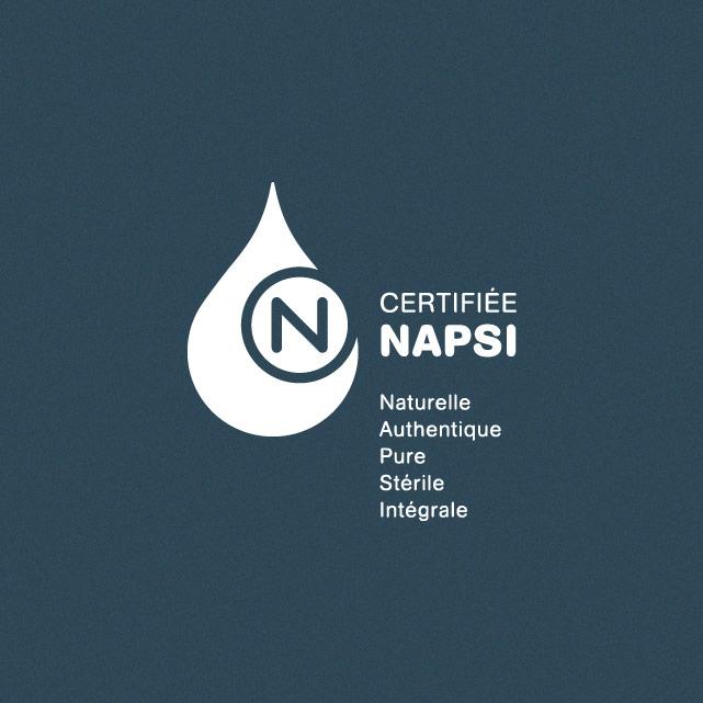 http://www.napsi.ca/wp-content/uploads/2014/08/napsi.jpg